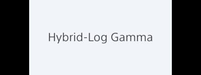 """""""Hybrid log gamma"""""""