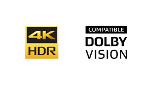 4K logotipas